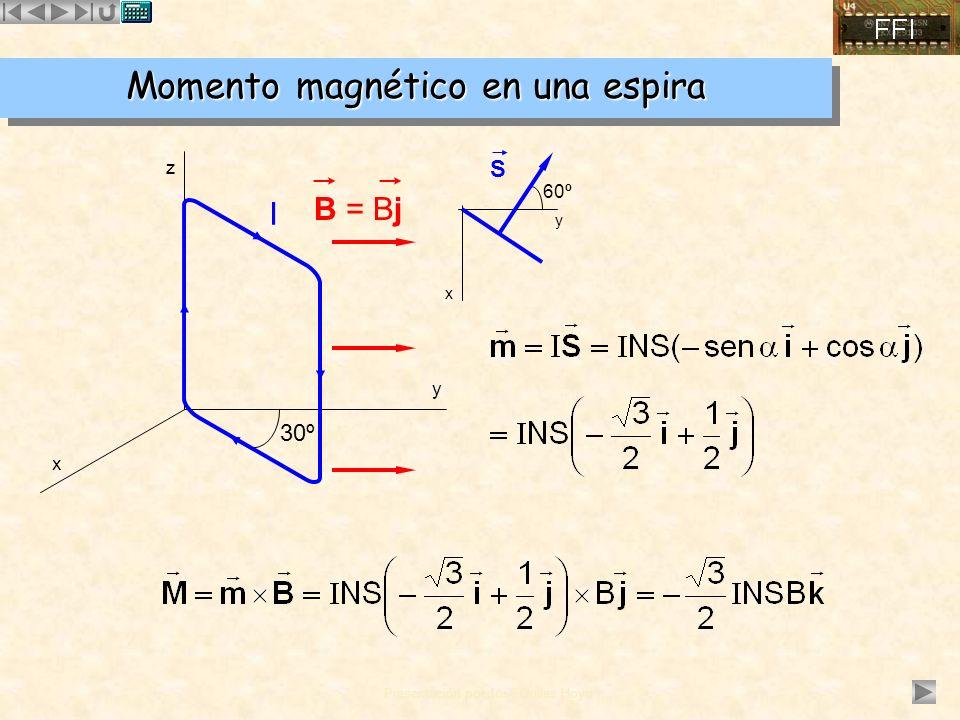 Momento magnético en una espira