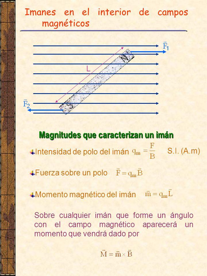 Imanes en el interior de campos magnéticos