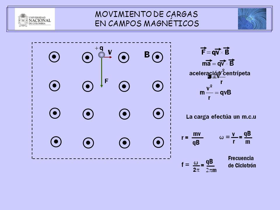 MOVIMIENTO DE CARGAS EN CAMPOS MAGNÉTICOS mv v qB r = w = = r qB m w