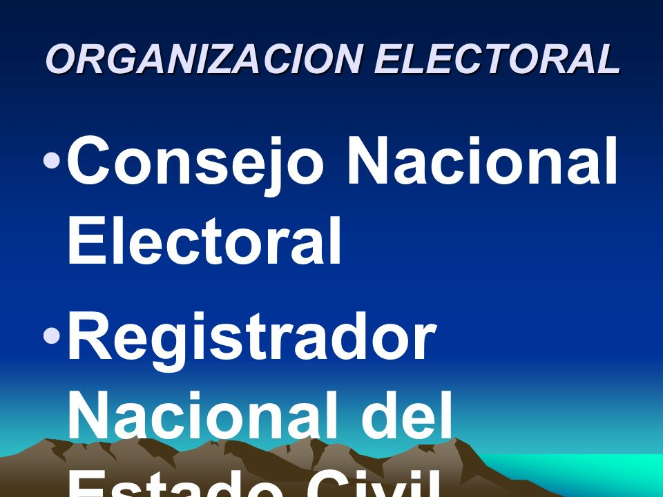 ORGANIZACION ELECTORAL