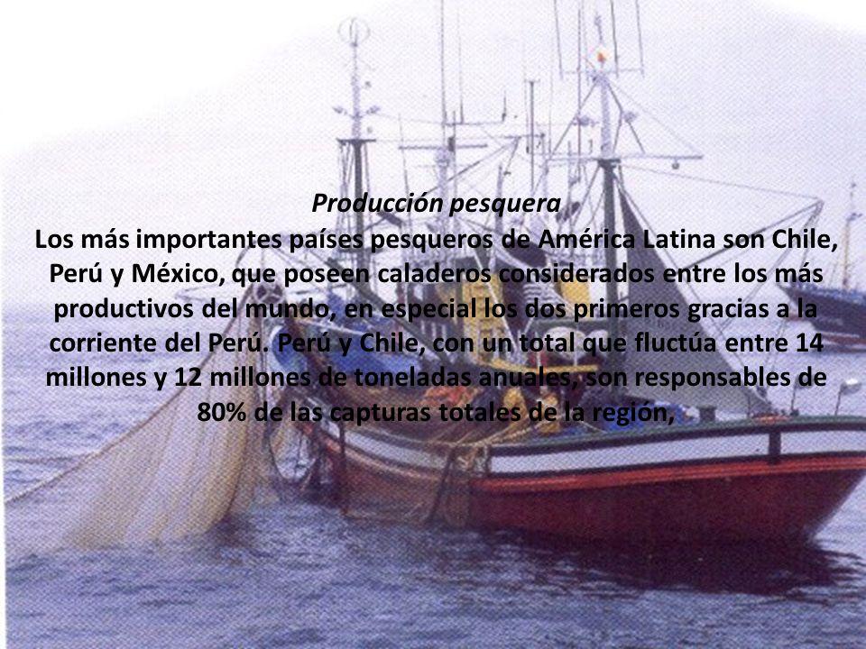 Producción pesquera Los más importantes países pesqueros de América Latina son Chile, Perú y México, que poseen caladeros considerados entre los más productivos del mundo, en especial los dos primeros gracias a la corriente del Perú.