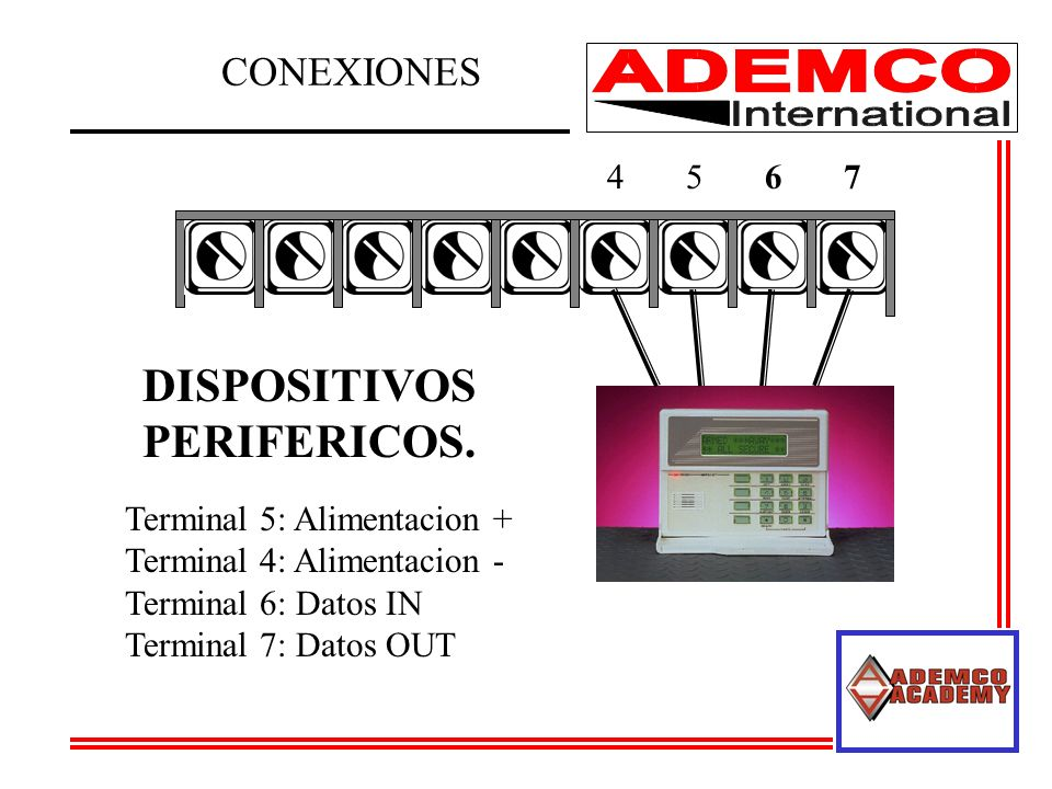 DISPOSITIVOS PERIFERICOS. CONEXIONES 4 5 6 7