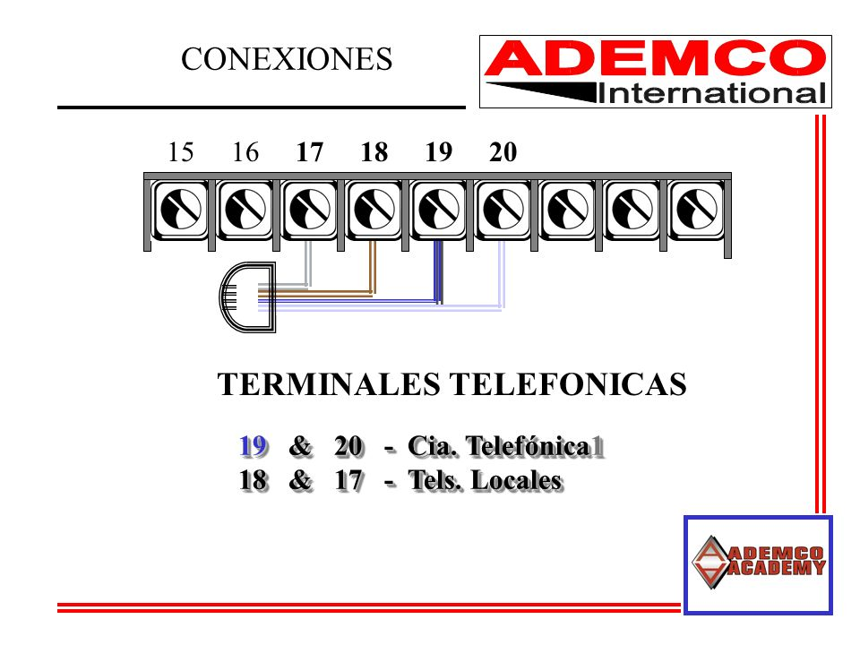 TERMINALES TELEFONICAS