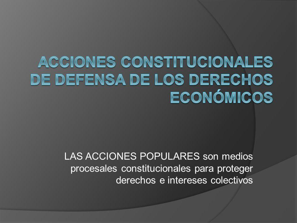 Acciones constitucionales de defensa de los derechos económicos