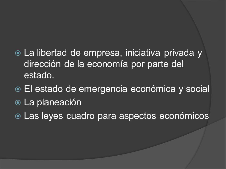 La libertad de empresa, iniciativa privada y dirección de la economía por parte del estado.