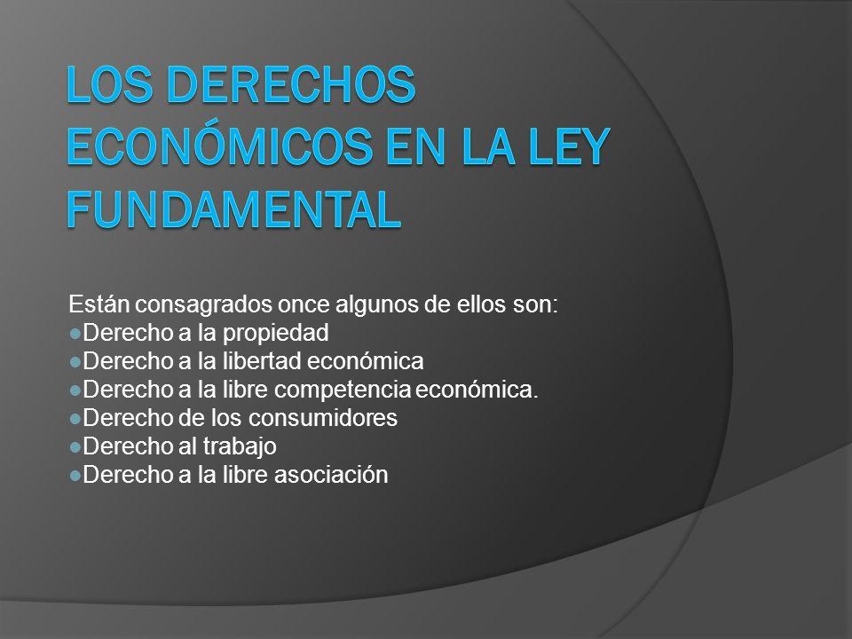 Los Derechos Económicos en la ley Fundamental