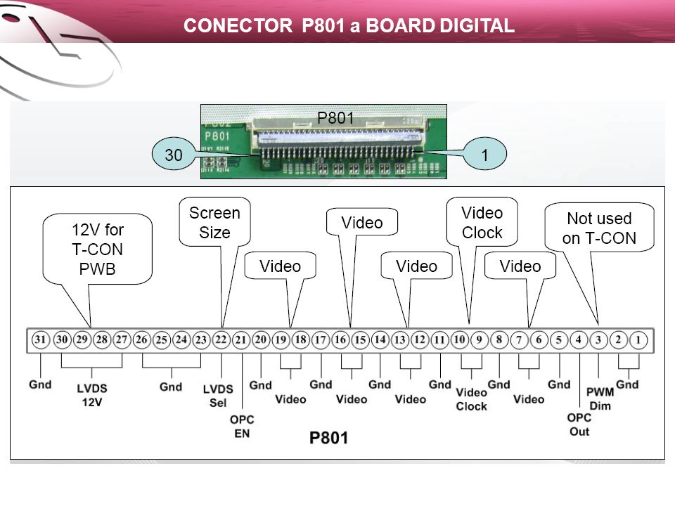 CONECTOR P801 a BOARD DIGITAL