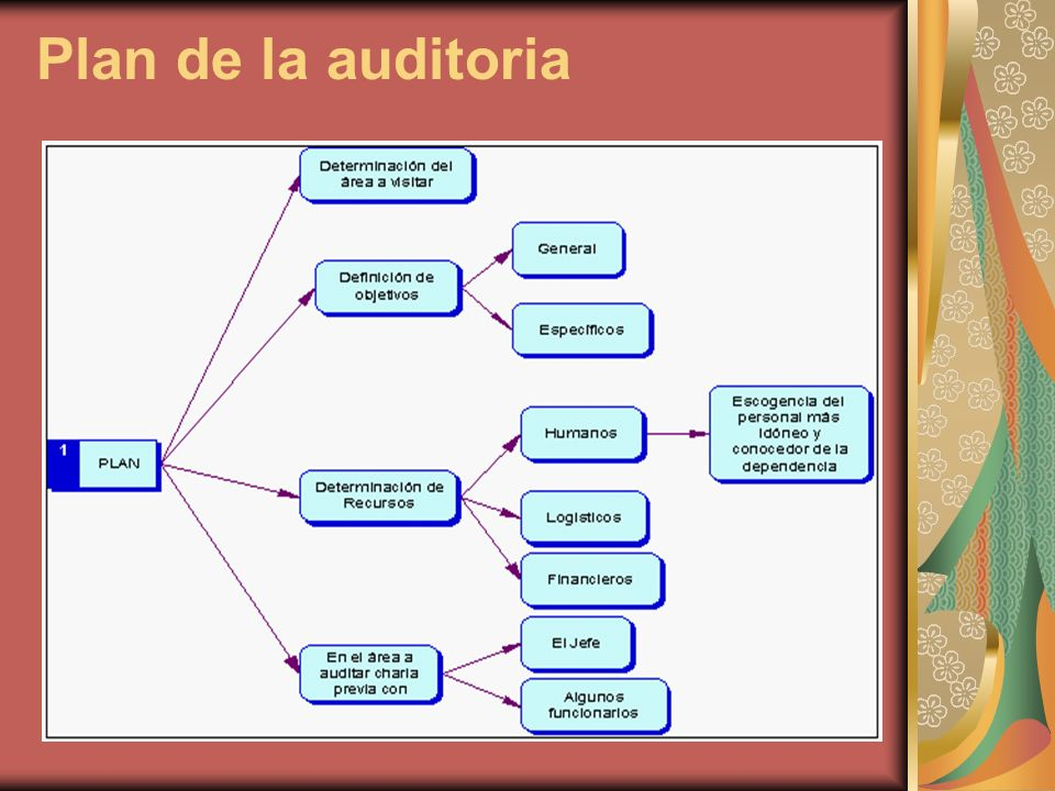 Plan de la auditoria