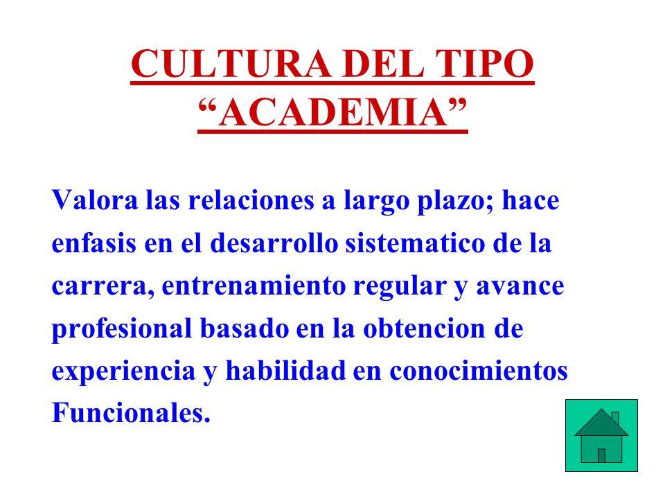 CULTURA DEL TIPO ACADEMIA