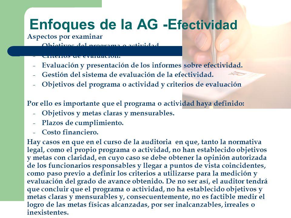 Enfoques de la AG -Efectividad