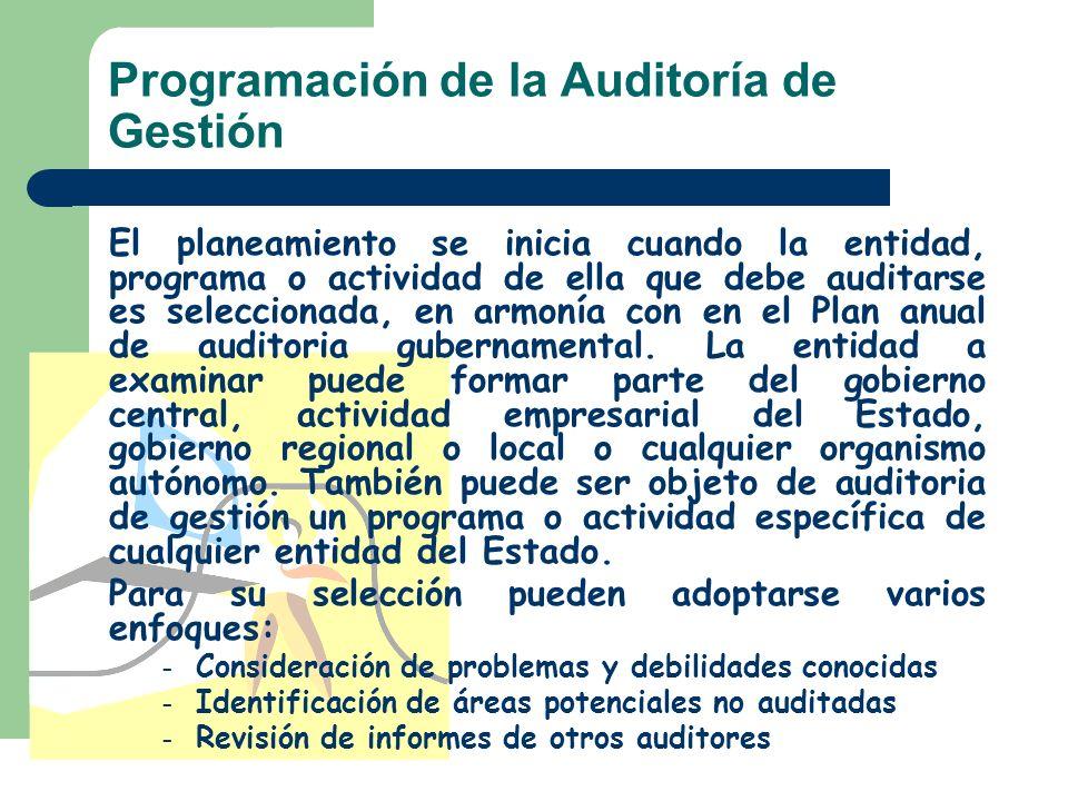 Programación de la Auditoría de Gestión