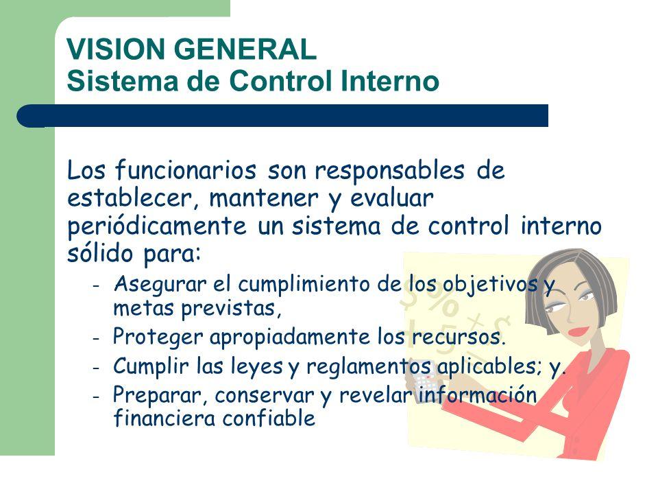 VISION GENERAL Sistema de Control Interno