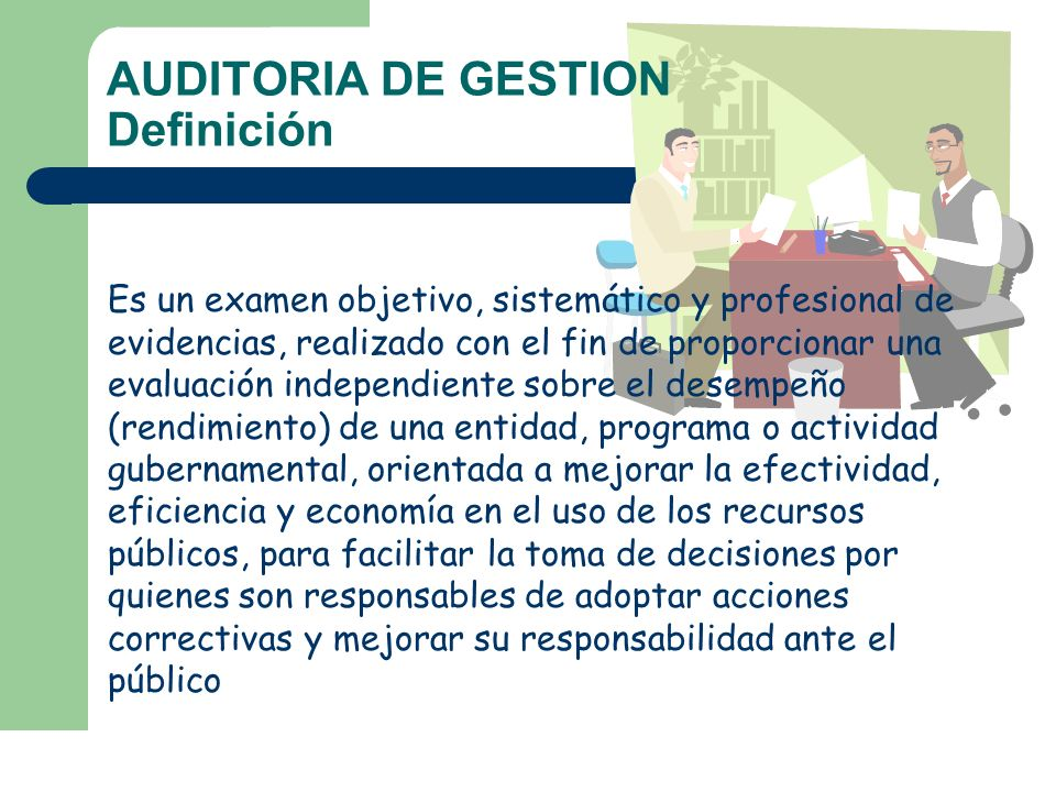 AUDITORIA DE GESTION Definición