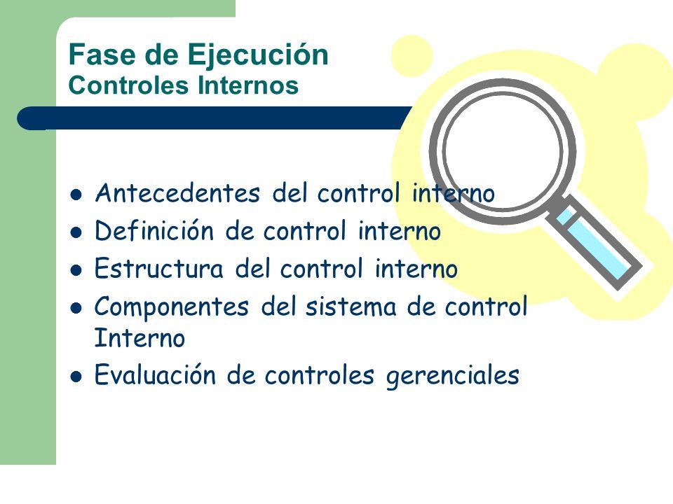 Fase de Ejecución Controles Internos