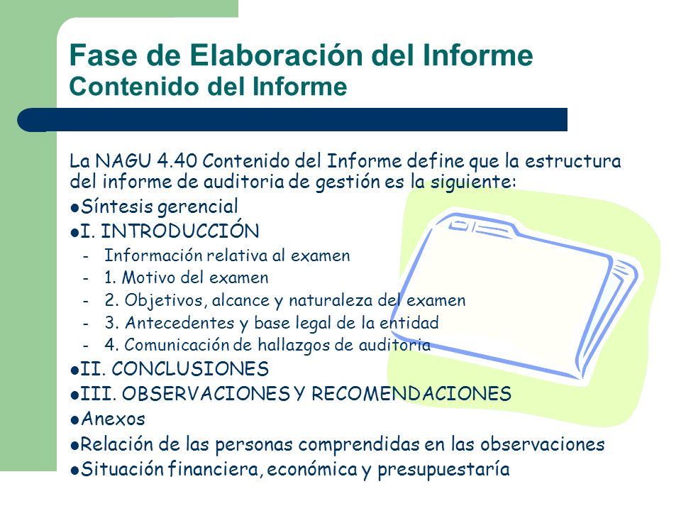 Fase de Elaboración del Informe Contenido del Informe