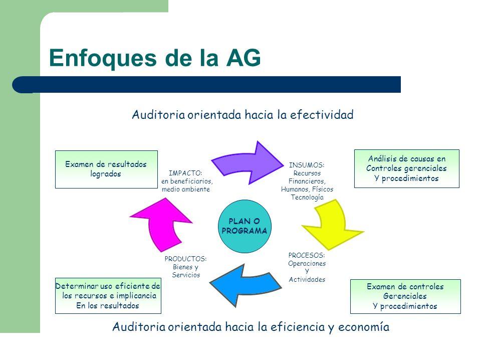 Enfoques de la AG Auditoria orientada hacia la efectividad