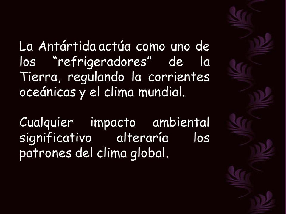 La Antártida actúa como uno de los refrigeradores de la Tierra, regulando la corrientes oceánicas y el clima mundial.