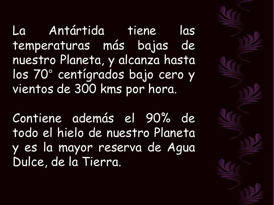 La Antártida tiene las temperaturas más bajas de nuestro Planeta, y alcanza hasta los 70° centígrados bajo cero y vientos de 300 kms por hora.