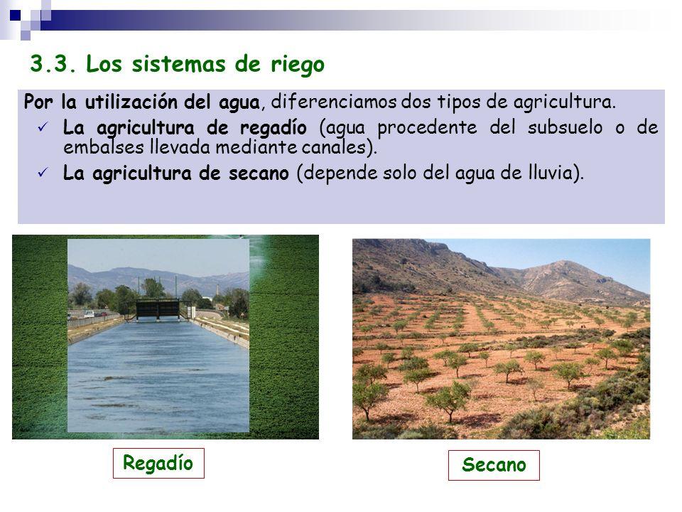 3.3. Los sistemas de riego Por la utilización del agua, diferenciamos dos tipos de agricultura.