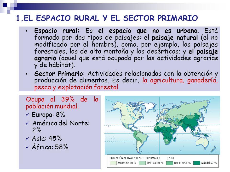 1.EL ESPACIO RURAL Y EL SECTOR PRIMARIO