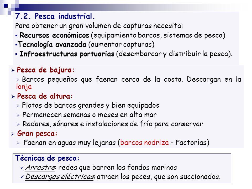 7.2. Pesca industrial. Para obtener un gran volumen de capturas necesita: Recursos económicos (equipamiento barcos, sistemas de pesca)