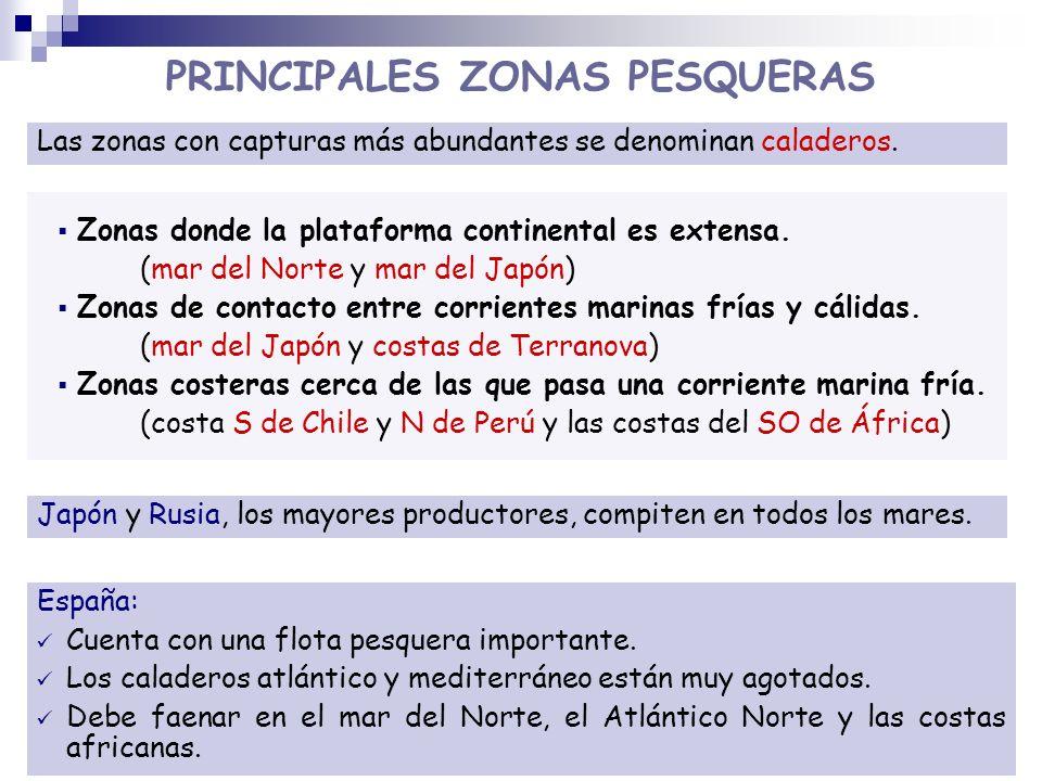 PRINCIPALES ZONAS PESQUERAS