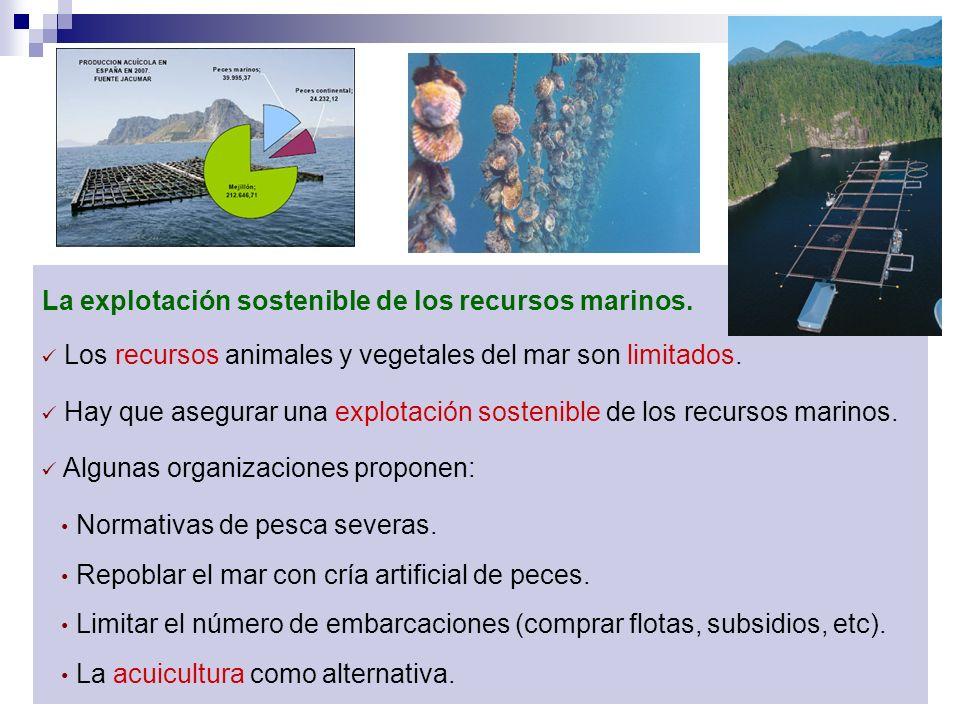 La explotación sostenible de los recursos marinos.