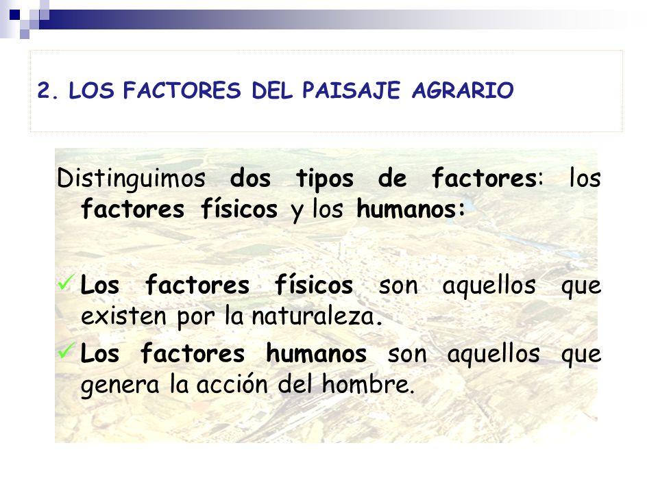 2. LOS FACTORES DEL PAISAJE AGRARIO