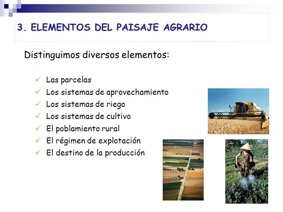 3. Elementos del paiSaje agrario
