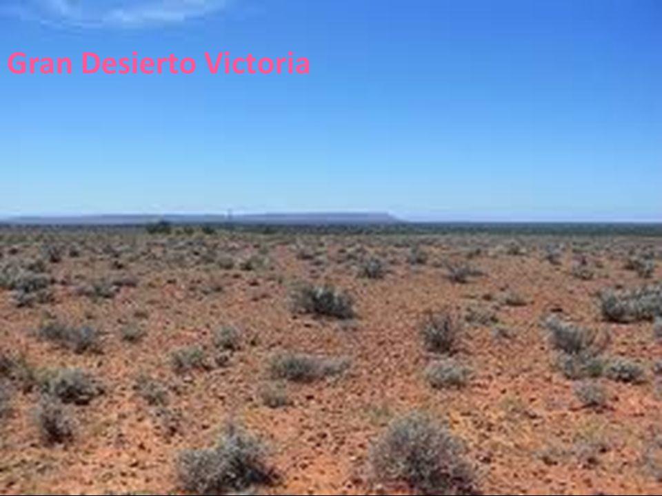 Gran Desierto Victoria