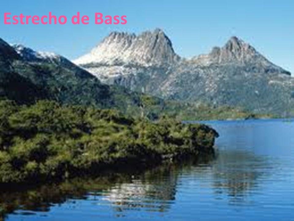 Estrecho de Bass 26/04/12