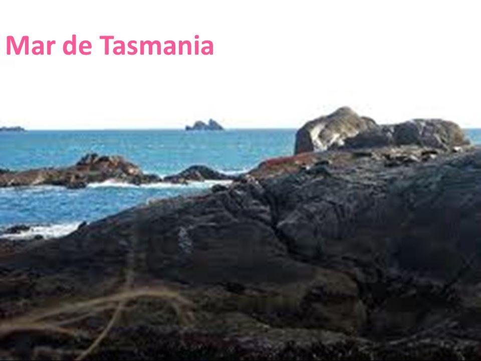 Mar de Tasmania 26/04/12