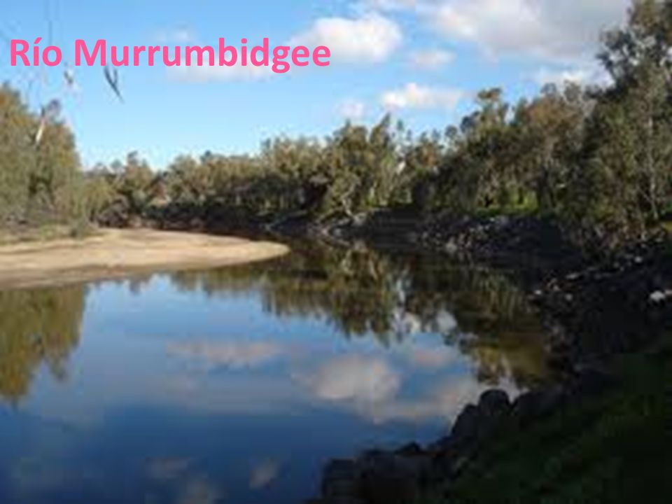 Río Murrumbidgee 26/04/12