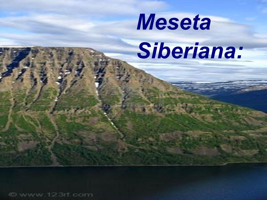 Meseta Siberiana: