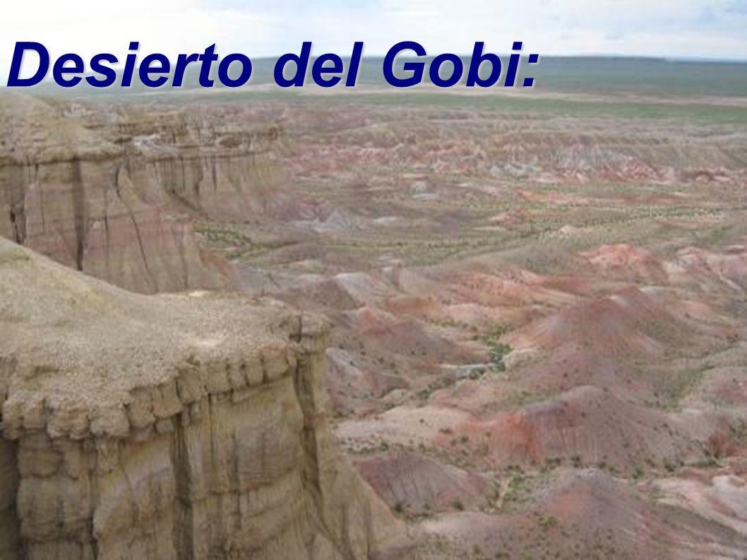 Desierto del Gobi:
