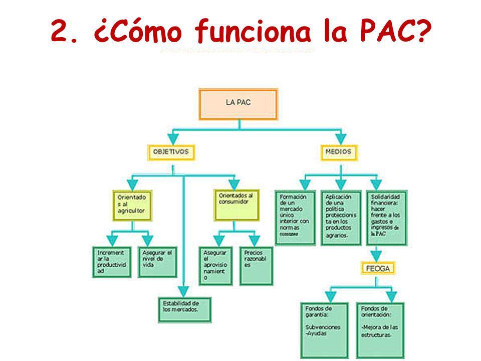 2. ¿Cómo funciona la PAC