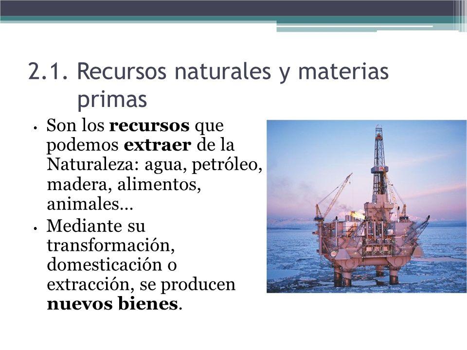 2.1. Recursos naturales y materias primas