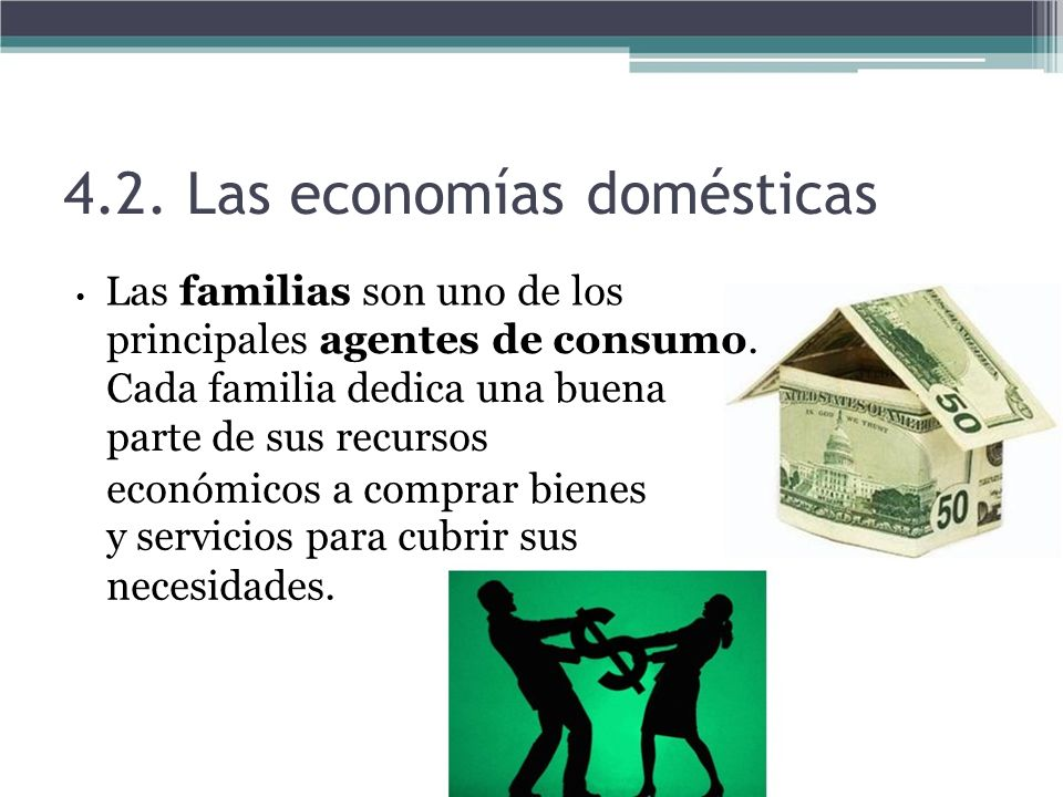 4.2. Las economías domésticas