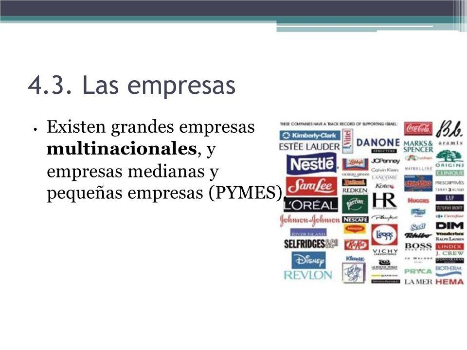 4.3. Las empresas empresas medianas y pequeñas empresas (PYMES).