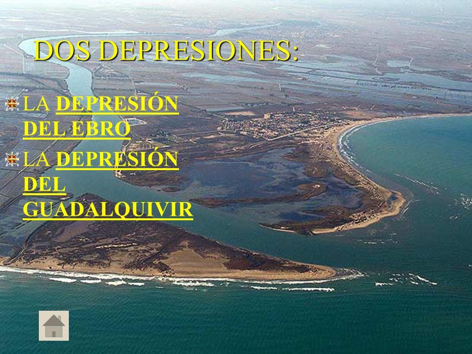 DOS DEPRESIONES: LA DEPRESIÓN DEL EBRO LA DEPRESIÓN DEL GUADALQUIVIR