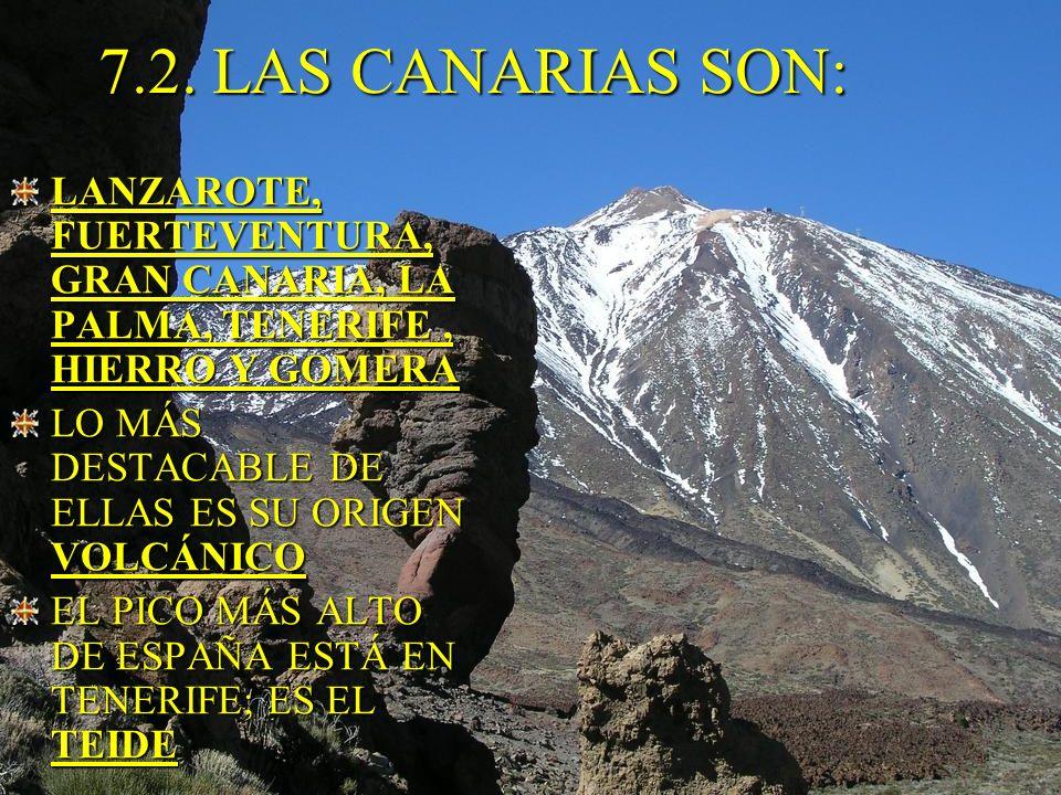7.2. LAS CANARIAS SON: LANZAROTE, FUERTEVENTURA, GRAN CANARIA, LA PALMA, TENERIFE , HIERRO Y GOMERA.