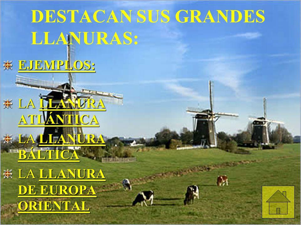 DESTACAN SUS GRANDES LLANURAS: