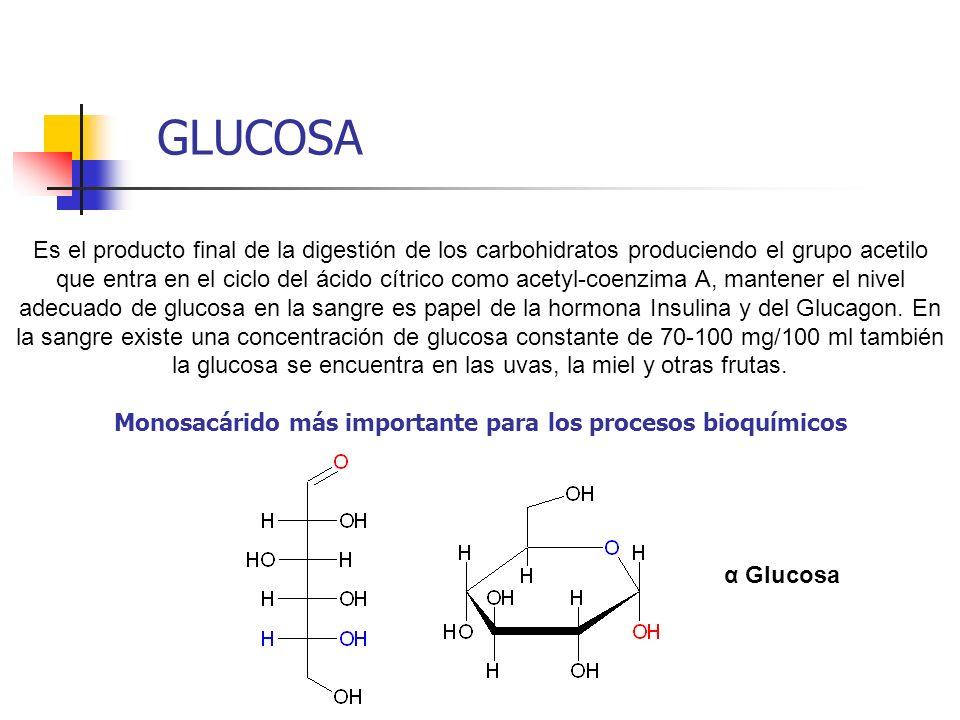 Monosacárido más importante para los procesos bioquímicos