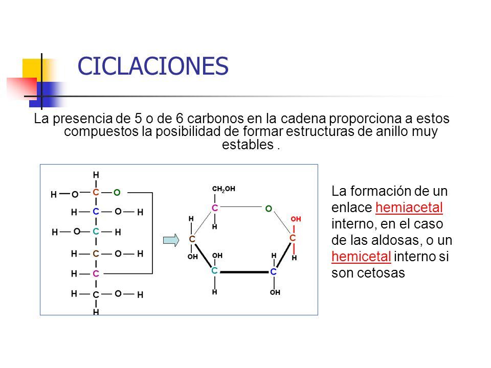 CICLACIONES