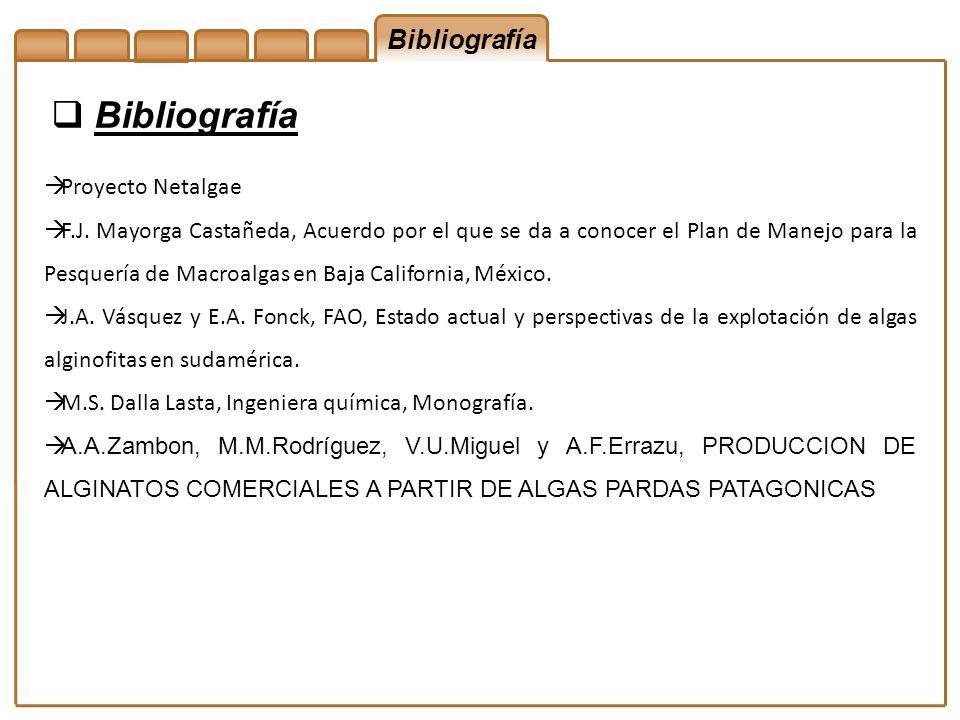 Bibliografía Bibliografía Proyecto Netalgae