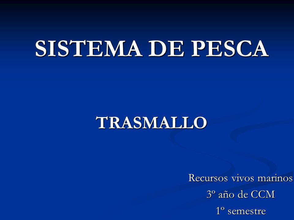 SISTEMA DE PESCA TRASMALLO