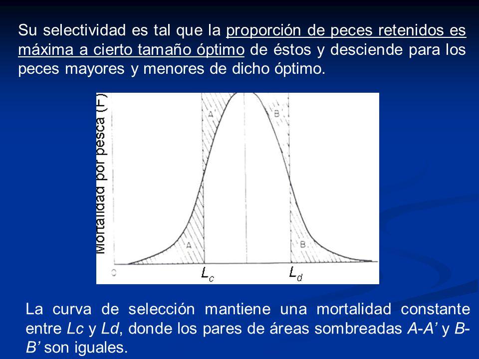 Su selectividad es tal que la proporción de peces retenidos es máxima a cierto tamaño óptimo de éstos y desciende para los peces mayores y menores de dicho óptimo.