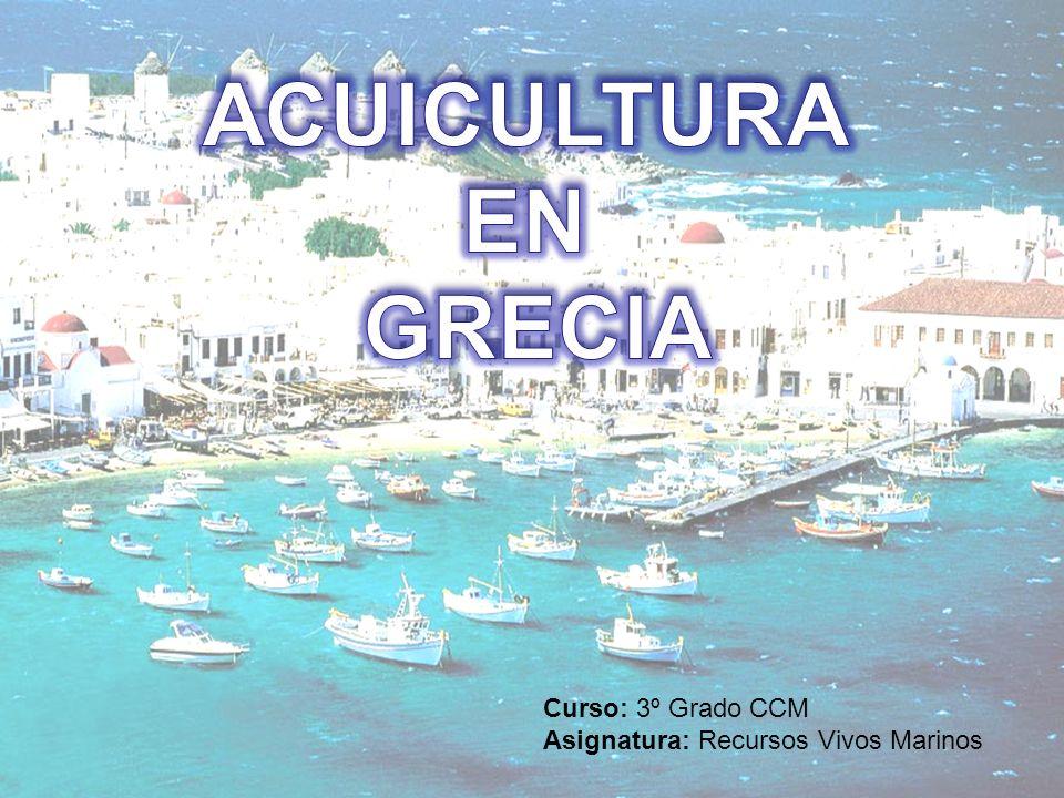 ACUICULTURA EN GRECIA Curso: 3º Grado CCM