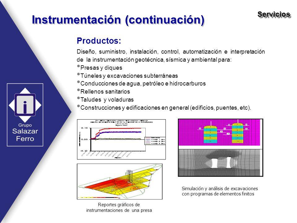 Reportes gráficos de instrumentaciones de una presa