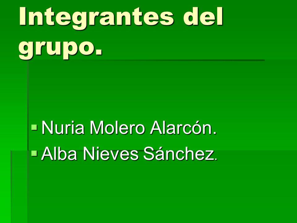 Integrantes del grupo. Nuria Molero Alarcón. Alba Nieves Sánchez.